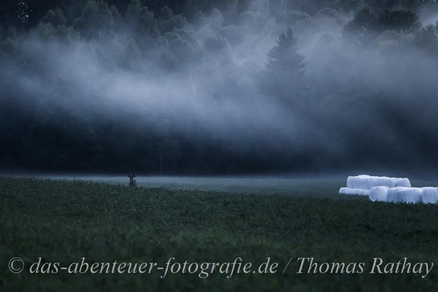 rathay outdoor fotokurs 2014 schweden 028 Impressionen vom OUTDOOR Fotokurs in Schweden 2014