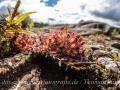 rathay-outdoor-fotokurs-2014-schweden-025-jpg