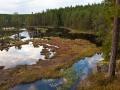 Wanderung durch die Wälder West Värmlands