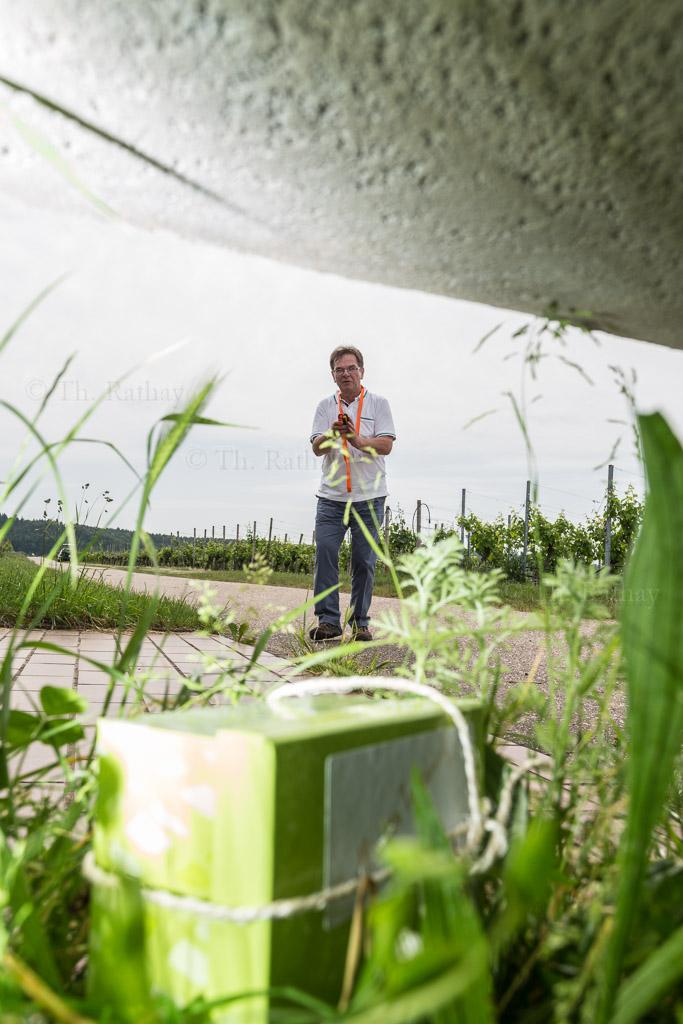 rathay weinsueden reisefotografie 006 Trollinger Tracking und Weingenuss im HeilbronnerLand.