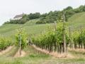 thumbs rathay weinsueden reisefotografie 010 Trollinger Tracking und Weingenuss im HeilbronnerLand.