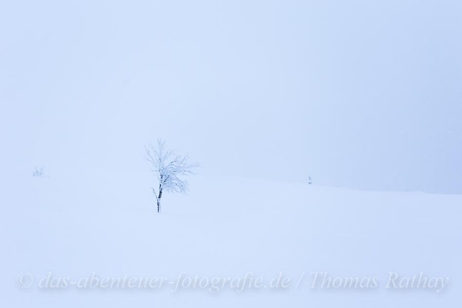 Rathay-Winterfotokurs_SCHWEDEN_002