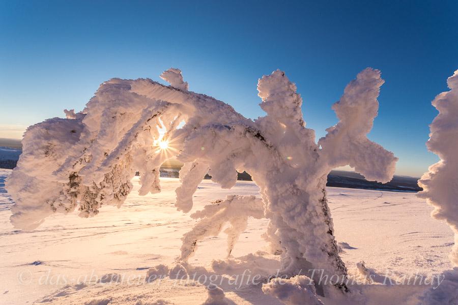 Rathay-Winterfotokurs_SCHWEDEN_008