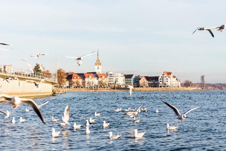 rathay_winter-bodensee-friedrichshafen-0008-jpg