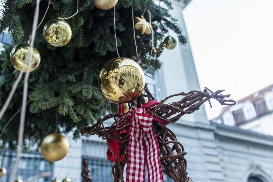 rathay_winter-bodensee-schweiz-0004-jpg