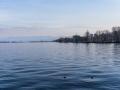 rathay_winter-bodensee-schweiz-0021-jpg