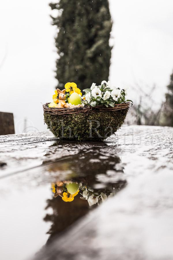 Osternest im Regen