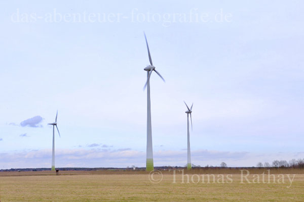 Windräder in Brandenburg