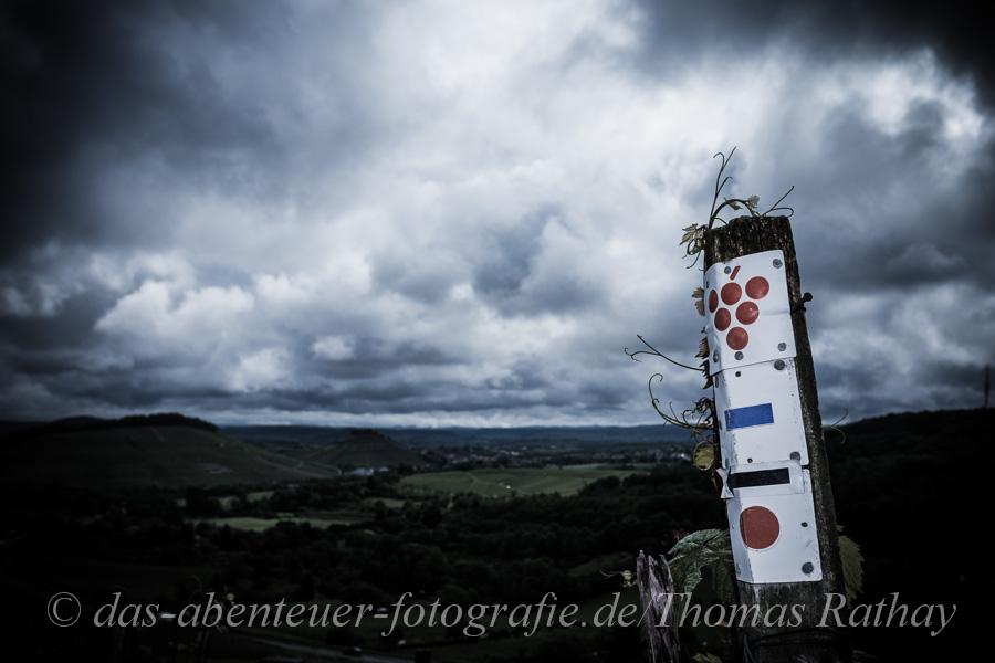 Weinpanoramatour
