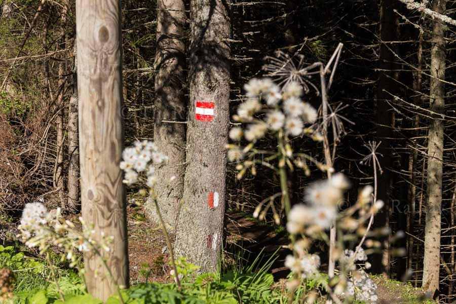 Wanderwege rund um Bad Gastein