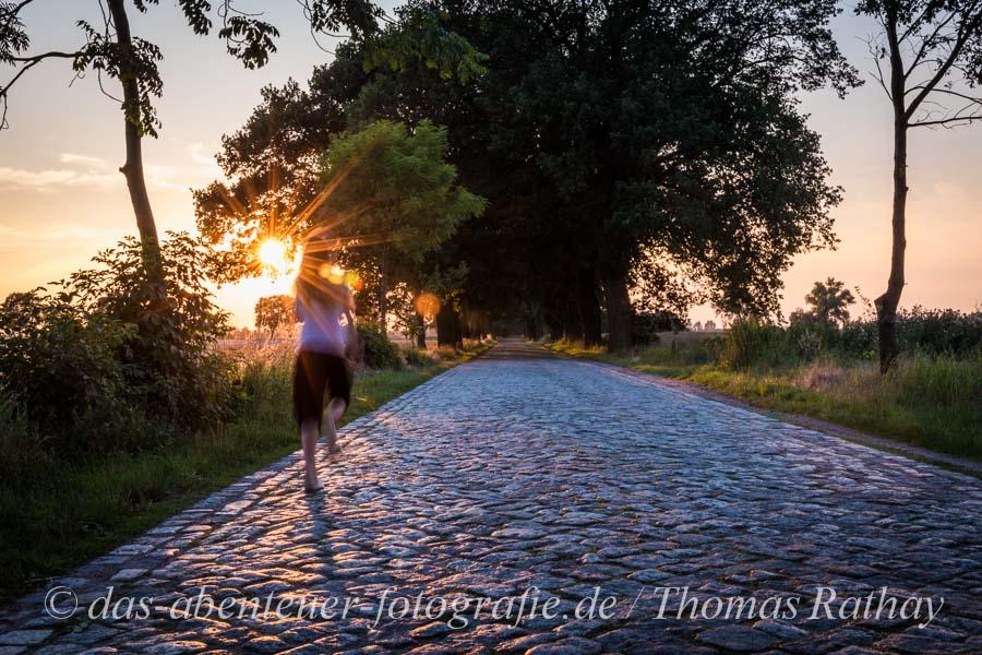 Rathay Brandenburg Oderbruch Sonnenkind Bild der Woche 29   2014