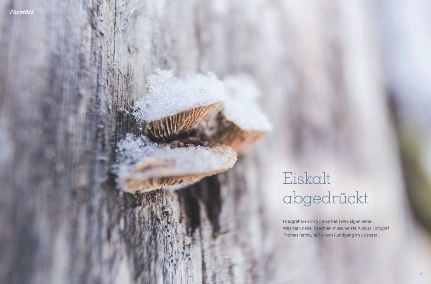 Winterfototipps von Thomas Rathay.
