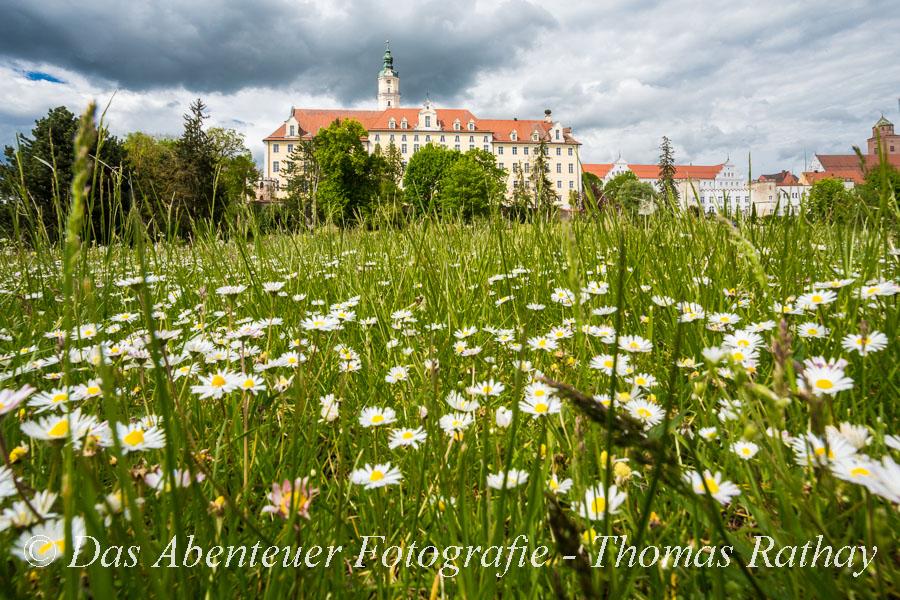 Wörnitzauen, Donauwörth, Klosteranlage