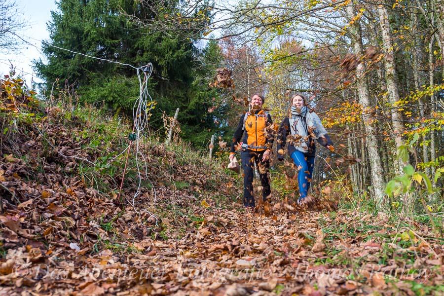 Herbst, Laub, wandern, Genießerpfad