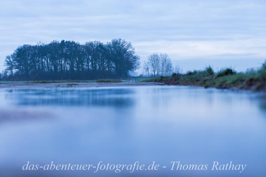 Winter, kalt, Spiegelung, Brandenburg