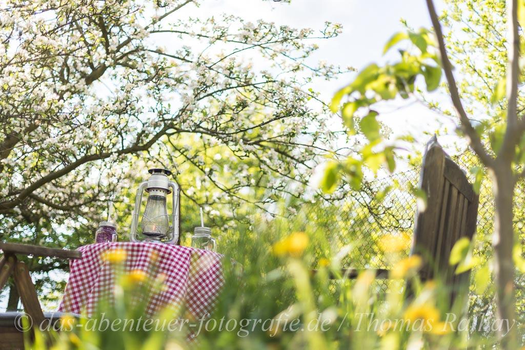 Barnimer Obstblütengarten - Wandlitz/Barnim
